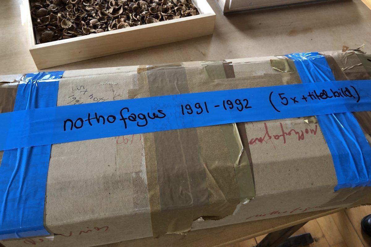 Eine ganz besondere Kostbarkeit aus dem Atelier von herman de vries - ausgepackt zu sehen am Stand der Galerie Geiger H2/D11